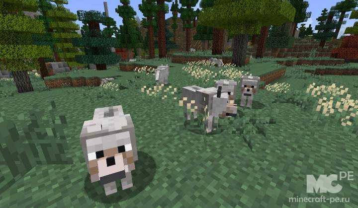 Мод Wolves Play Fetch 1.17.1